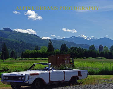 I call this one country-classic.  I had the hardtop version of this OLDS. between the old car with primer spots, the dumpster and the gravel lot cannot take away from the misty Farm and the beautiful range of mountains on the way to Bellingham.
