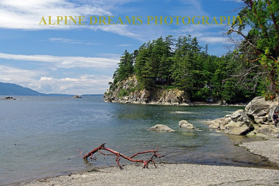 Here is a perfect example of a beach along the Chuckanut drive. Between the San Juans, the shoreline, the driftwood and the crystal clear water this is one of the most scenic areas I have seen without any SNOW!