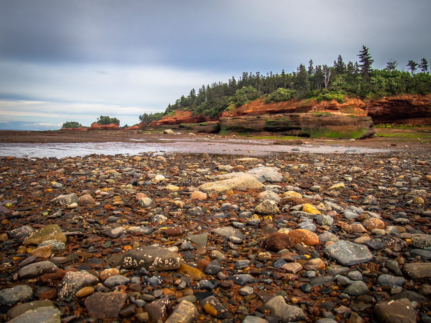 Burntcoat Head Park at the Bay of Fundy in Nova Scotia