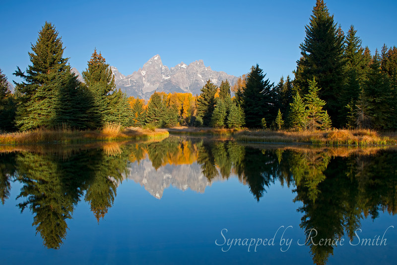 Grand Tetons Morning Reflection