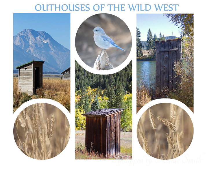 Outhouses of the Wild West