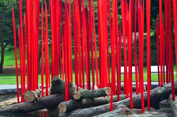 NY Botanical Gardens 28May'17