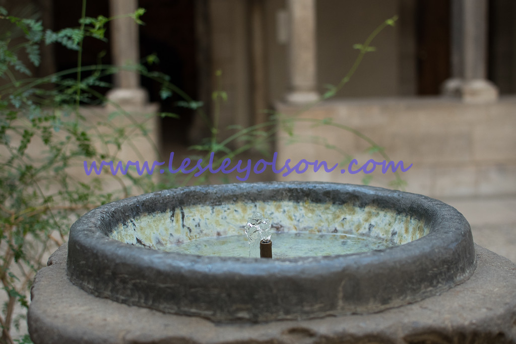 Fountain in a courtyard at The Cloisters, NYC.<br /> Nikon D750 and 35mm lens.
