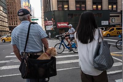 NYC 2017-09