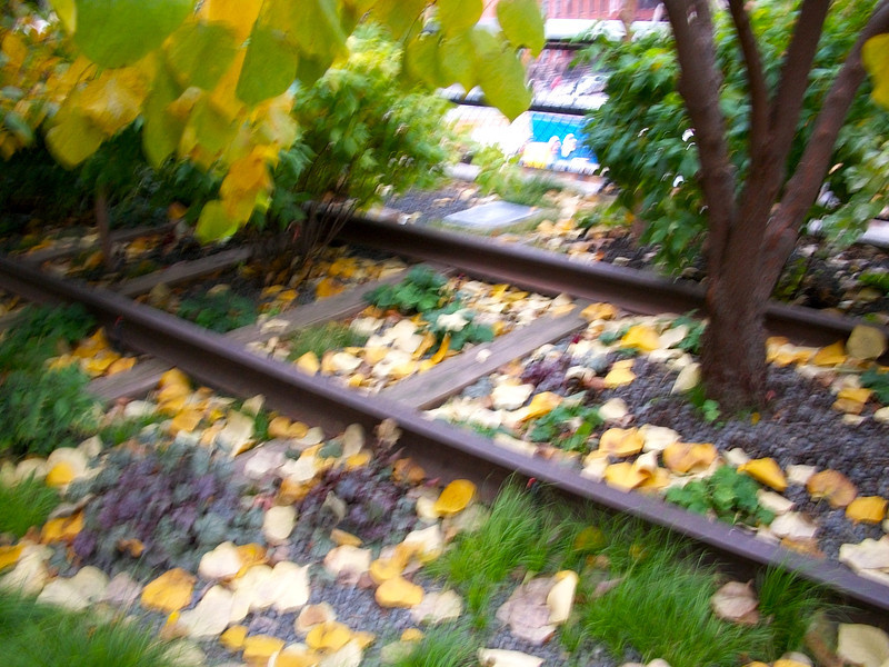 old rail tracks along the converted High Line Park