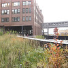 "We walked the ""Highline"" a former elevated freight train line that has been turned into a walking trail on the West side of Manhattan."