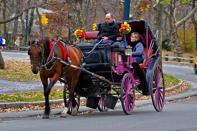 NYC - Nov 2011