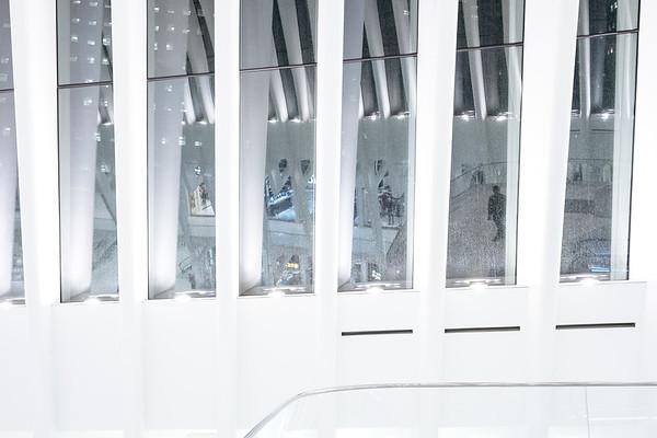 Interior Architecture In The Oculus