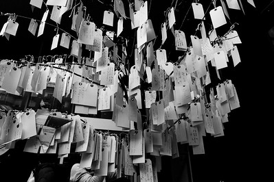 This is a 'wishing tree' on the MOMA garden