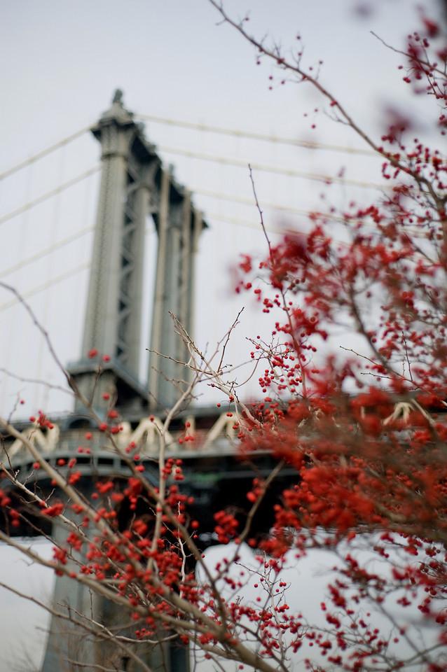 Manhattan Bridge in December