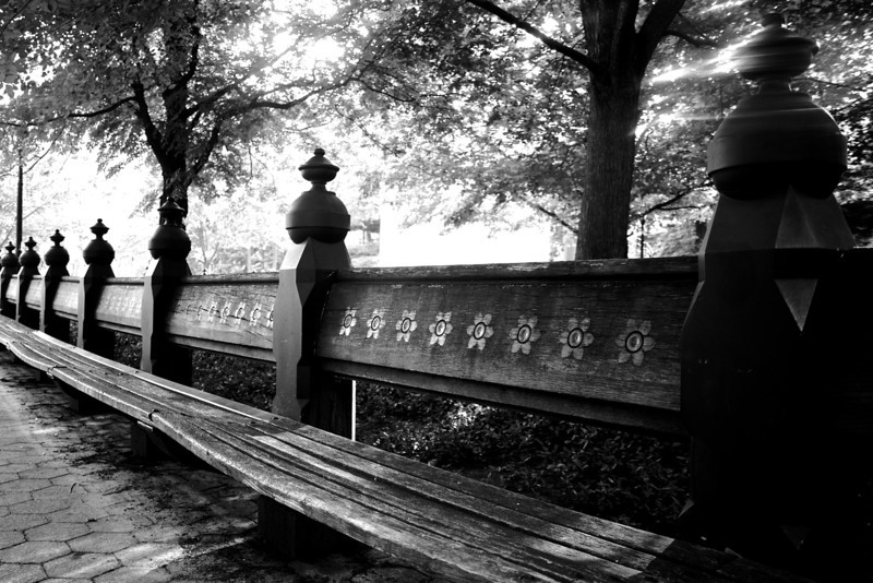 Park Bench - Central Park, NYC