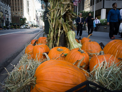 In MIdtown all the street lights had pumpkins around them.