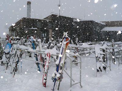 Then it snowed!!!!!