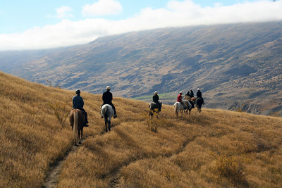 Riding Appaloosas through the hills of Cardrona
