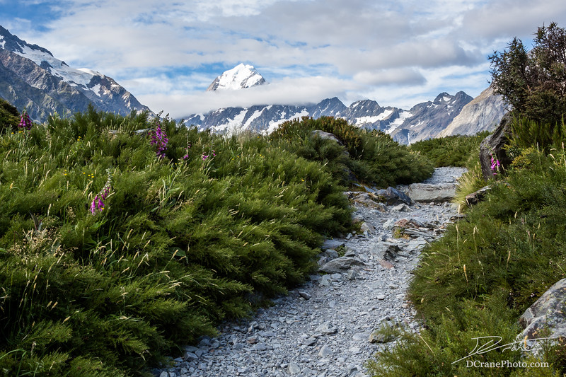 Trail toward Mt Cook, highest peak in New Zealand
