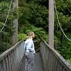 Swing bridge upper Karangahake