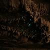 2 glowworms