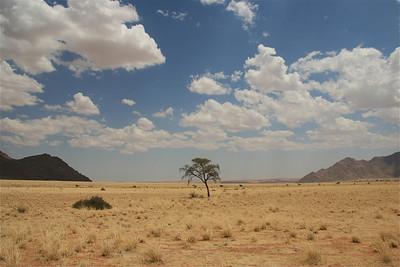 Uitzicht vanaf ons kampeerplekje. Namtib Lodge, Namibië.