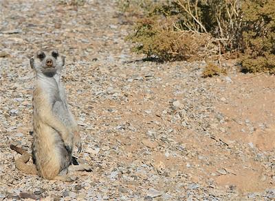 Hi! Keetmanshoop, Namibië.