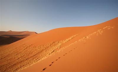 De rode zandduinen van Sossusvlei. Namib Naukluft, Namibië.
