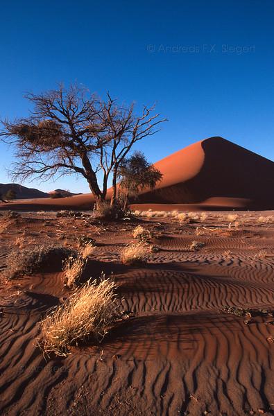 Dune between Sesrim and Sossusvlei