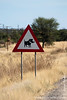 Warthog Road Sign