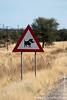Warthog Road Sign