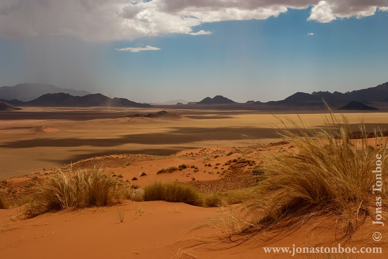 Desert Landscape and Approaching Storm