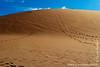 Sossusvlei Dune at Sunrise