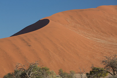 Namibia red sand dunes are the tallest in the world