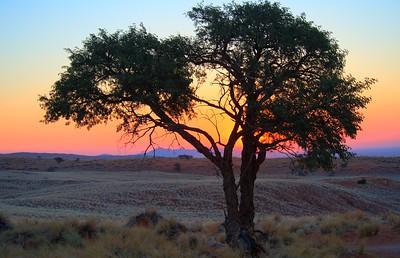 namibia-2013-0138