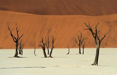 namibia-2013-0234