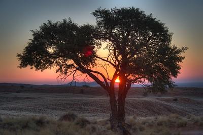 namibia-2013-0153