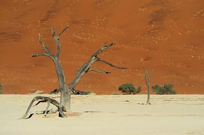 namibia-2013-0229