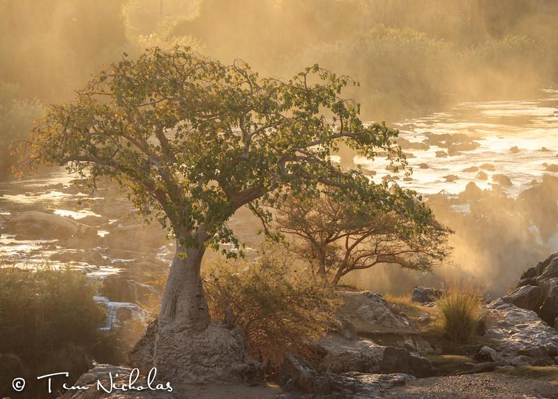 Epupa Falls misty sunrise