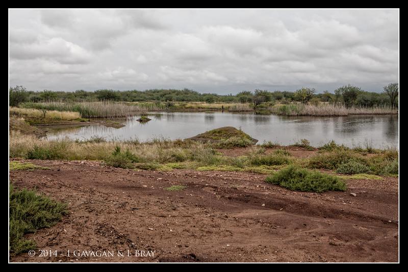 Mariental Wetland