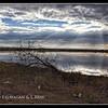 Keetmanshoop Wetland