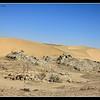 Crescentic Dunes