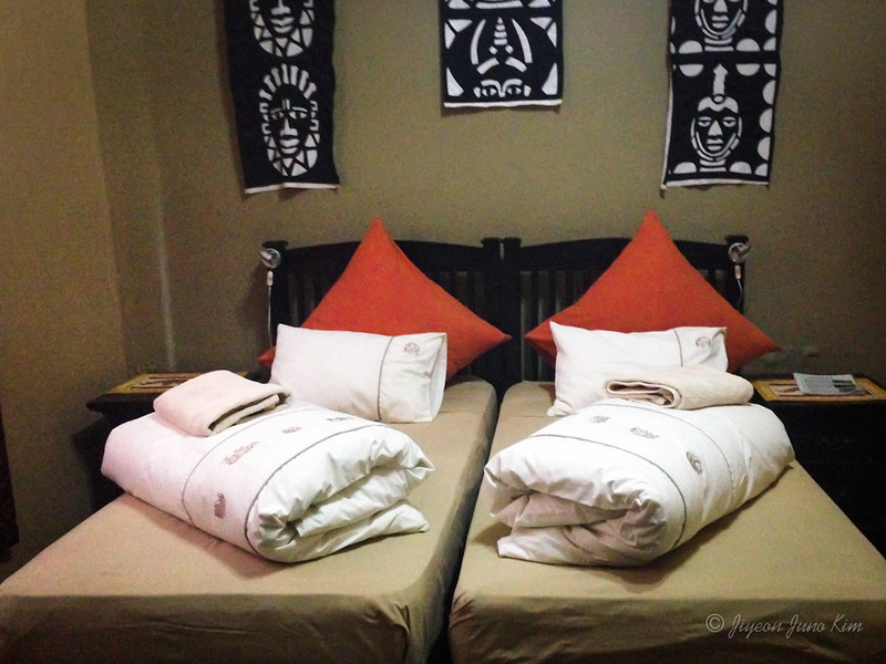 Comfortable bed at Chameleon Backpackers