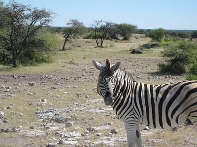 Namibia Tour Spanish Style