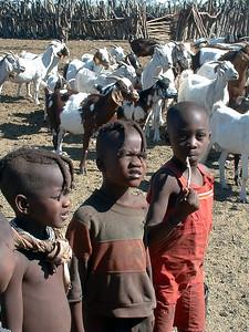 himba-kids-goats 2 593