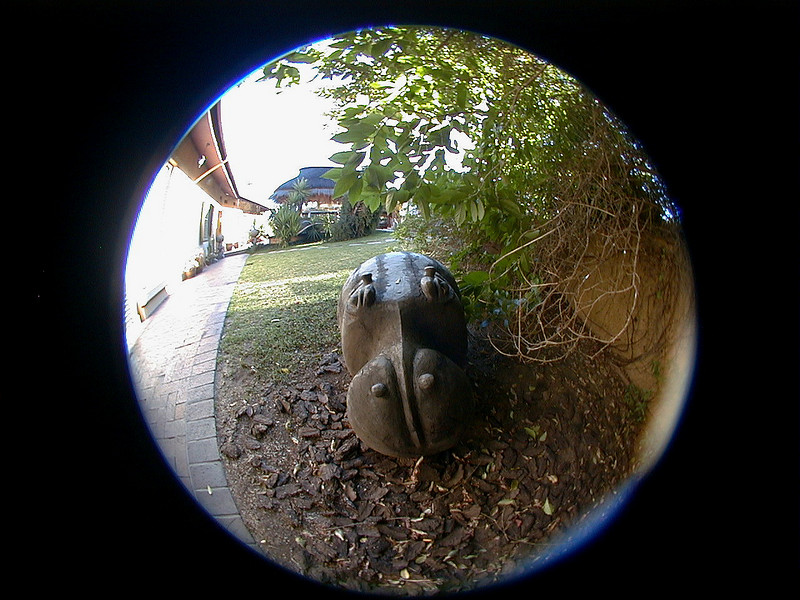 hippo-villa-verdi 2 747