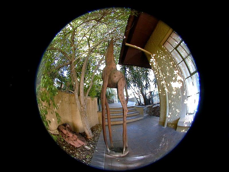 giraffe-villa-verdi 2 752