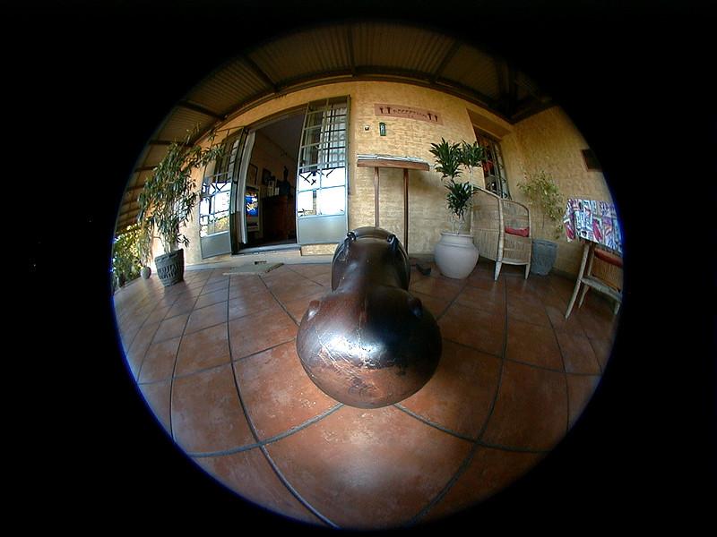 hippo-guard-villa-verdi 2 765