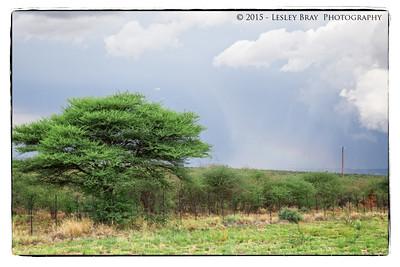 Storm Brewing near Otjiwarongo