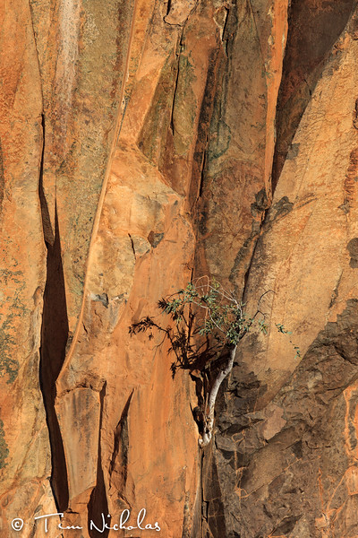 Palmwag - Aub Canyon