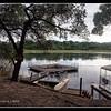 Ngepi Camp Swimming Pool
