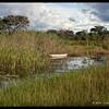 Camp Kwando Wetlands
