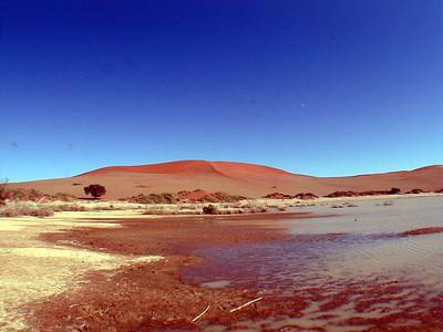 Safari Adventures #10B / Spirit Of The Namib