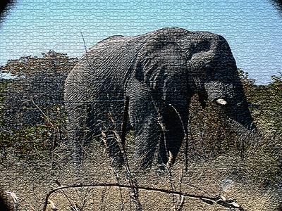 elephant-etosha 1 197
